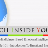Introductie cursus mindfulness emotionele intelligentie